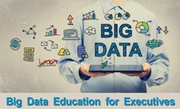 Big Data Education for Executives